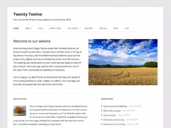 tema-wordpress-2012