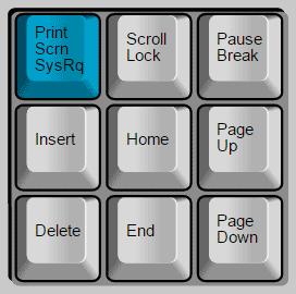 menggunakan tombol printscreen untuk mengambil gambar screenshot pada layar komputer