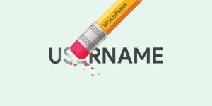 3 Cara Mengubah Username WordPress